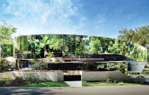 Cairns-Botanic-Gardens-Charles-Wright-1