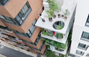 garden-house-ryue-nishizawa-1