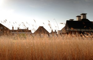 Haworth-Tompkins-Snap-Maltings-2