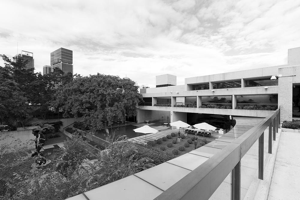 The Sculpture Garden at the Queensland Art Gallery
