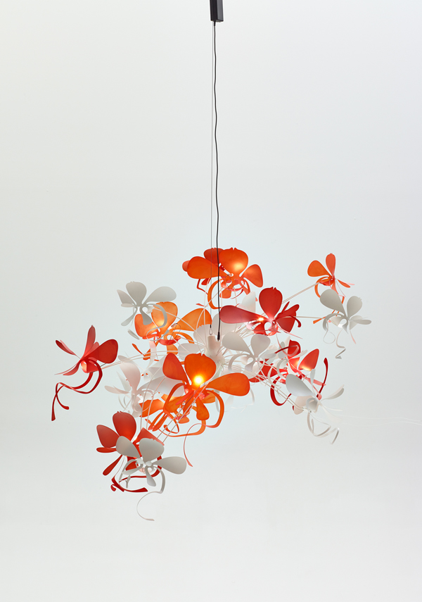 Marc Pascal orchid light