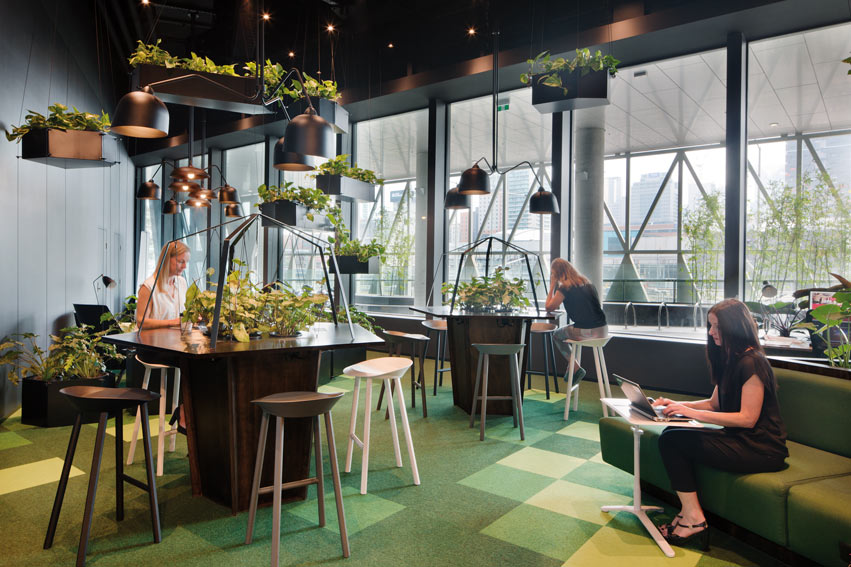 Co-working Village by Woods Bagot. Photo: Shannon McGrath