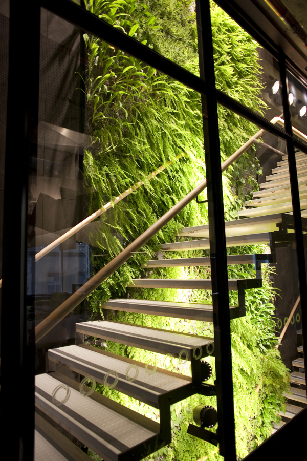 The 22-storey Origin Energy green wall. Photo courtesy www.greenwall.com.au