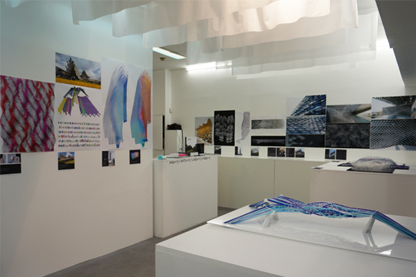 IMAGE 1: Agent-Based Computational Design exhibition at AA[n+1] in Paris