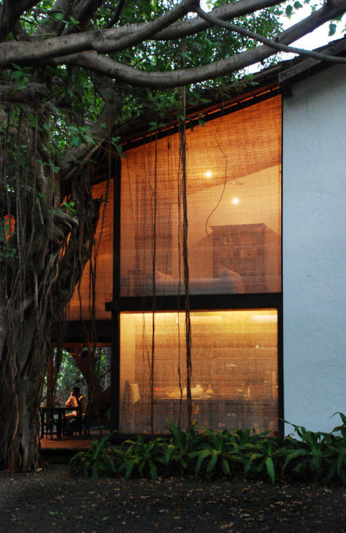 Reading Room by Studio Mumbai, photo courtesy of Studio Mumbai.