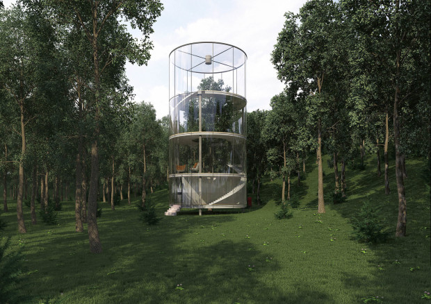 Tree in the house by A Masow Architects, image courtesy A Masow Architects.