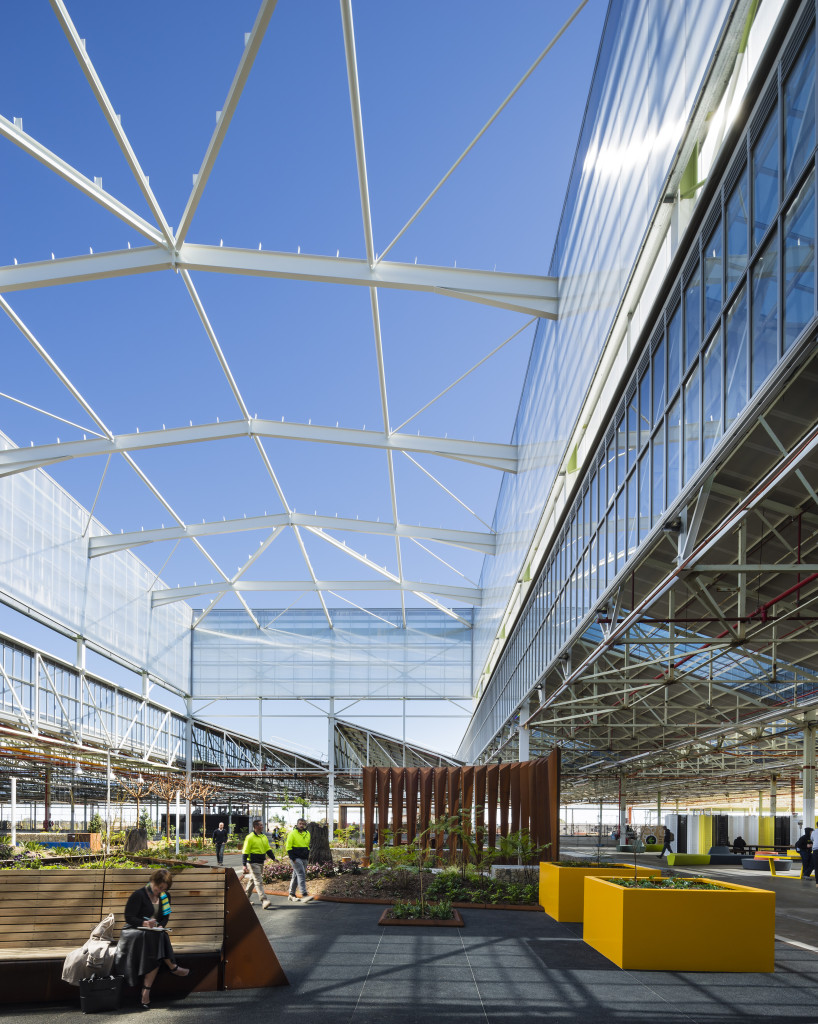 Open courtyard space at Tonsley. Photo by Sam Noonan.